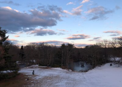 A Naturalist's Winter Journey: Virginia Dankel – Saturday, January 16, 11am